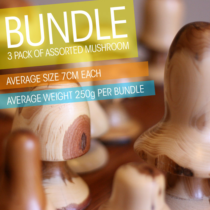 ye03-3 Whisperswood Bundle of assorted size mushrooms